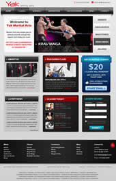 martial arts website